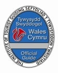 Wales Blue Badge